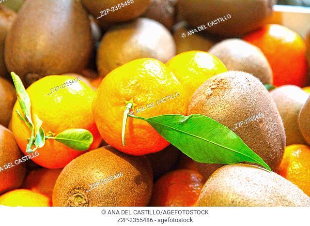 Oranges and kiwis Valencia Spain