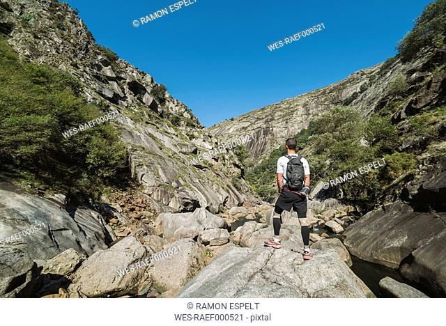 Spain, Galicia, A Capela, Ultra trail runner at the canyon of Eume river