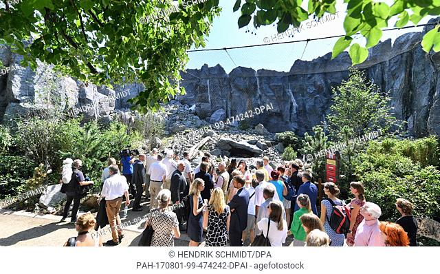 The first visitors admire the newly opened Himalayan landscape enclosure in the zoo in Leipzig, Germany, 1 August 2017. The landscape with its sandy ground and...