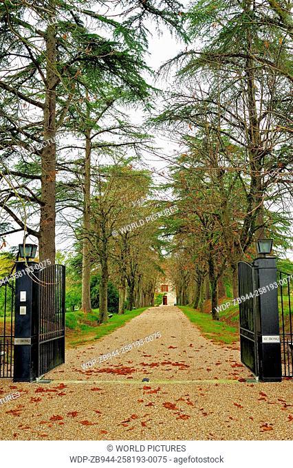 tree-lined driveway, Lot-et-Garonne Department, Aquitaine, France
