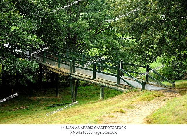 Wooden bridge in the forest at the end of a road. Larrabea golf course, Alava, Basque Country, Spain