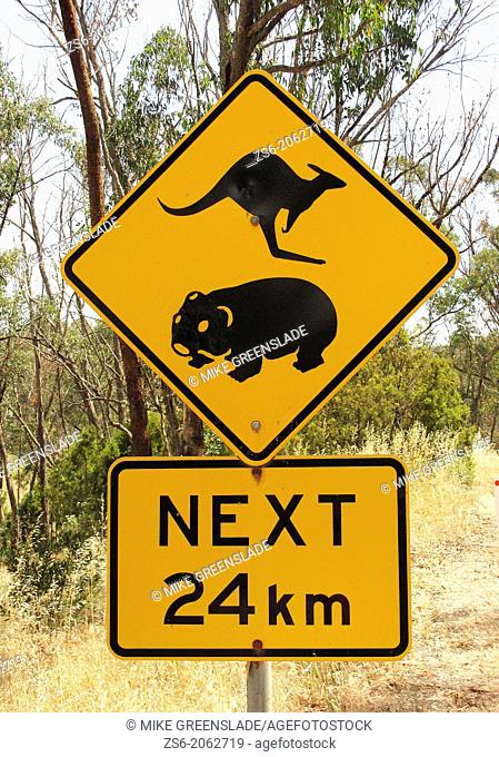 Road sign warning Beware of kangaroos and wombats