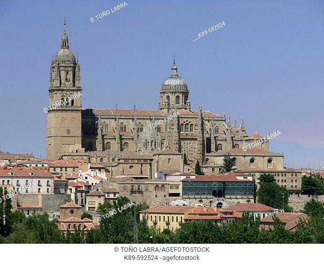 Cathedrals. Salamanca. Spain