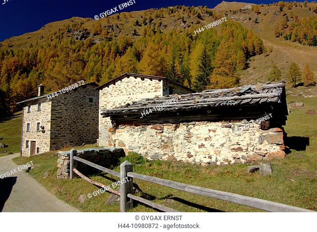 Indian Summer in the valle di Campo in Grisons