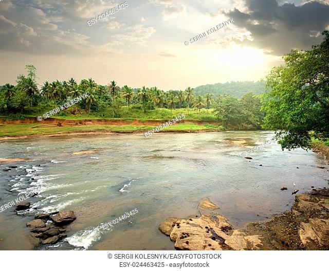 River in jungle of Sri Lanka at sunset