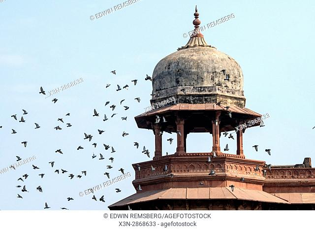 Birds fly around a dome structure at the Agra Fort, located in Agra, India