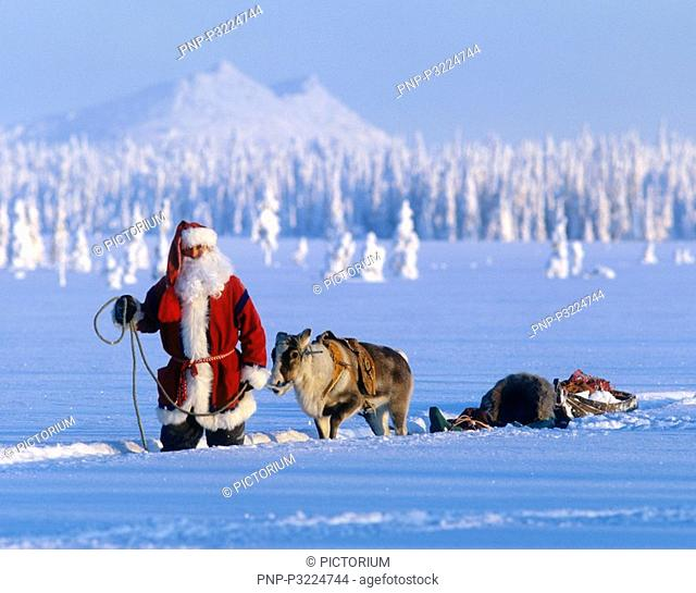 Santa Claus and the reindeer