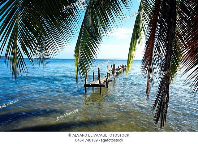 Beach, Carenero island, Bocas del Toro province, Caribbean sea, Panama