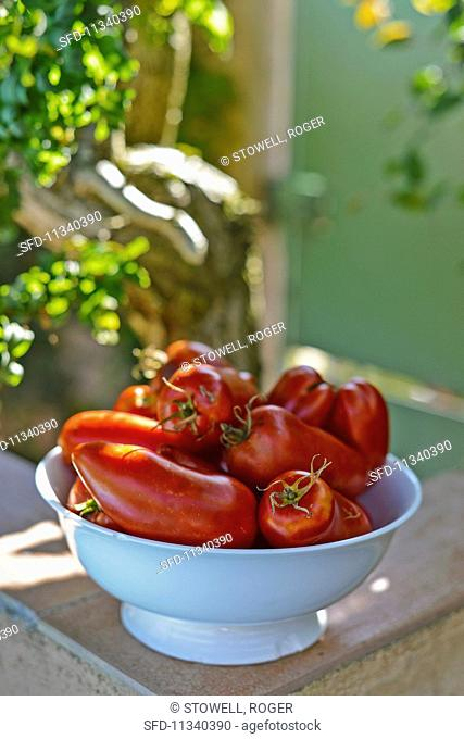 Plum tomatoes in a bowl on a table outside