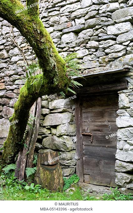 Old storage in the Verzasca Valley