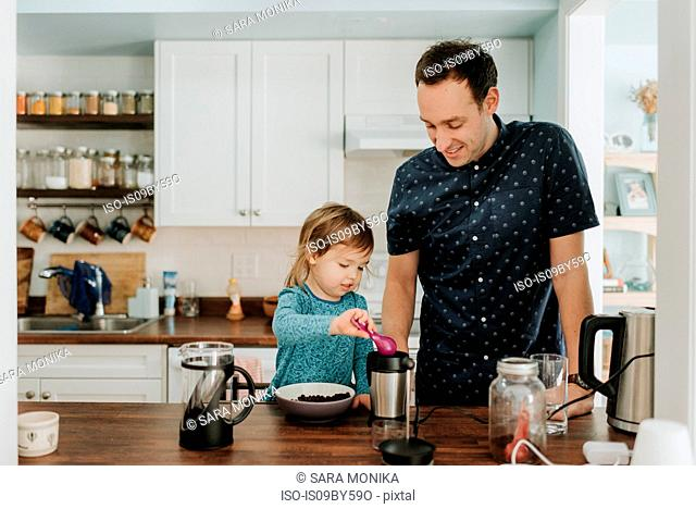 Female toddler and father preparing food at kitchen counter