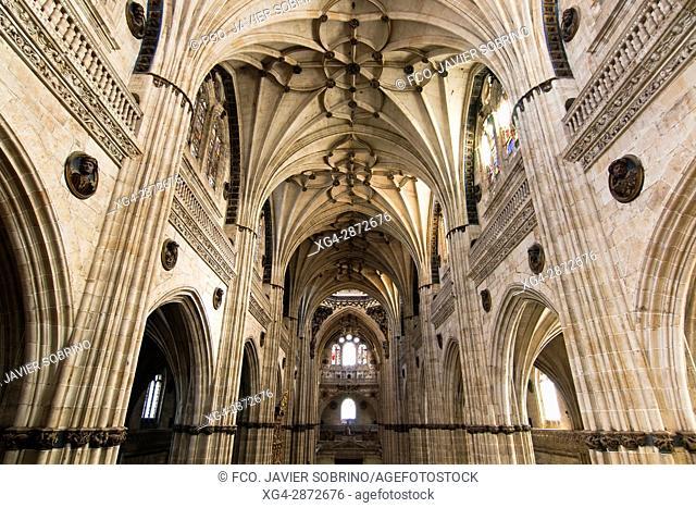 Interior de la Catedral Nueva. Salamanca. Castilla-León. España. Europa