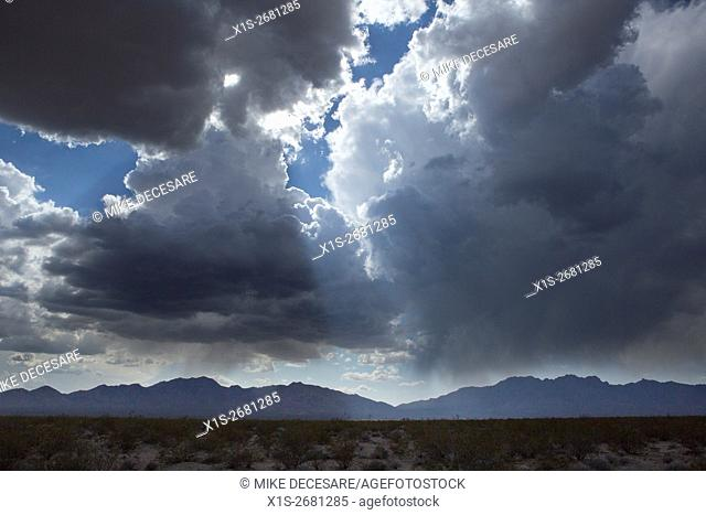 A massive thunder storm blots out the sun above the Mojave Desert