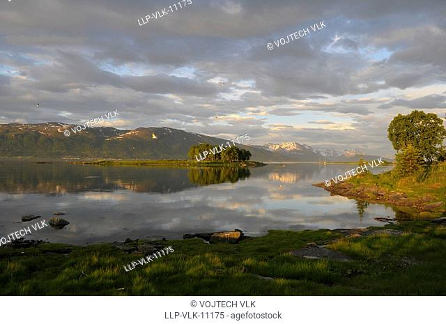 The lake, green trees and violet sky during the sunset