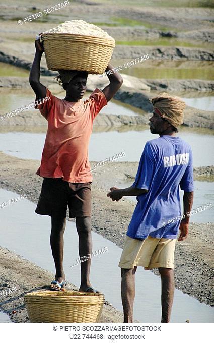 Panjim Goa, India, men working at a saline