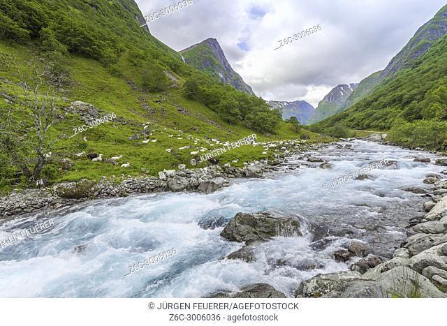 river and goates in the valley Undredalen, municipality of Aurland, Norway, Undredal at the Aurlandsfjorden, Sognefjorden, Sogn og Fjordane county