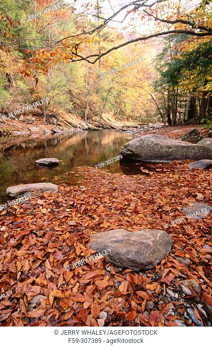 Little River. Tremont. Great Smoky Mountains National Park. Tennessee, USA