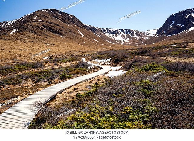 Tablelands Trail, Gros Morne National Park, near Woody Point, Newfoundland, Canada