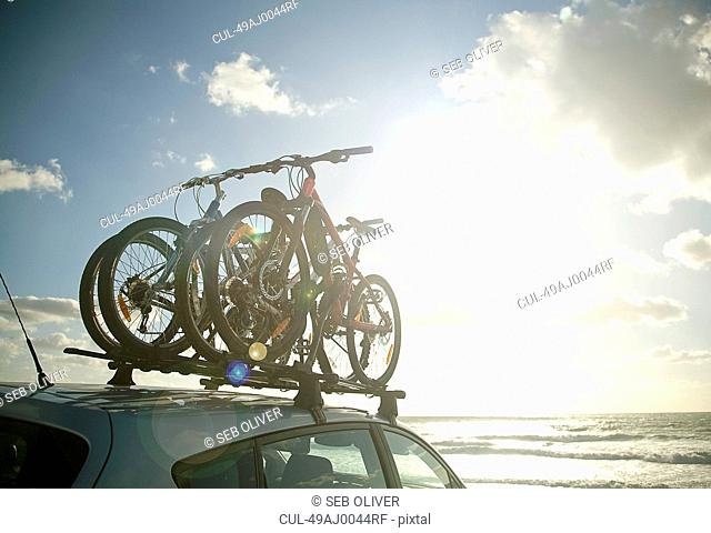Bicycles attached to roof of car
