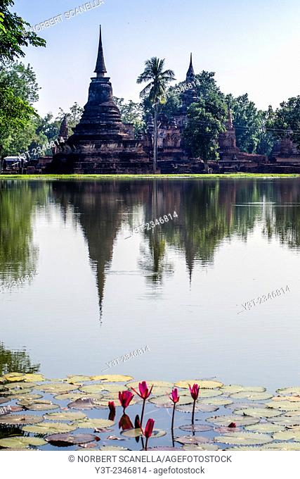 Asia. Thailand, old capital of Siam. Sukhothai archaeological Park, classified UNESCO World Heritage. Wat Mahatat. Chedi and palm reflected in still lake