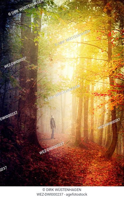 Germany, autumn forest, man standing on forest track