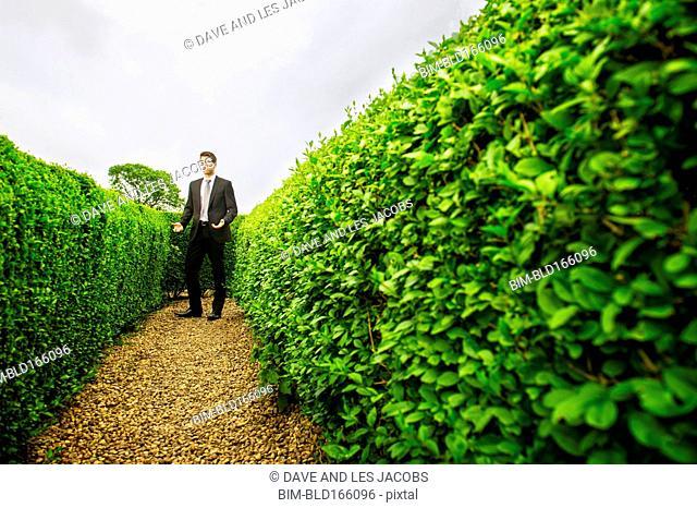 Caucasian businessman walking in hedge maze