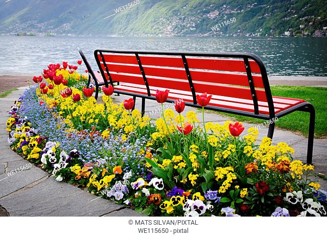 bench arounded with flowers in the lake side
