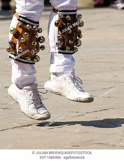 Detail of Morris dancers' legs in action with bells on