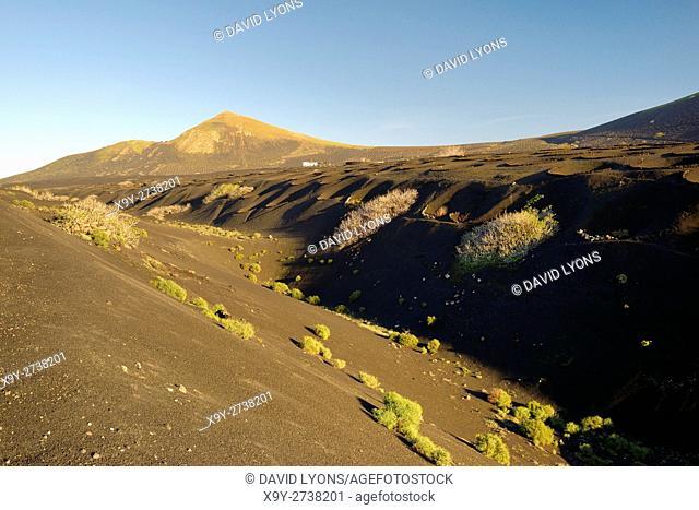 Lanzarote, Canary Islands. Typical volcanic ash soil landscape. Cinder stone wind shelter vine cultivation niches near La Geria