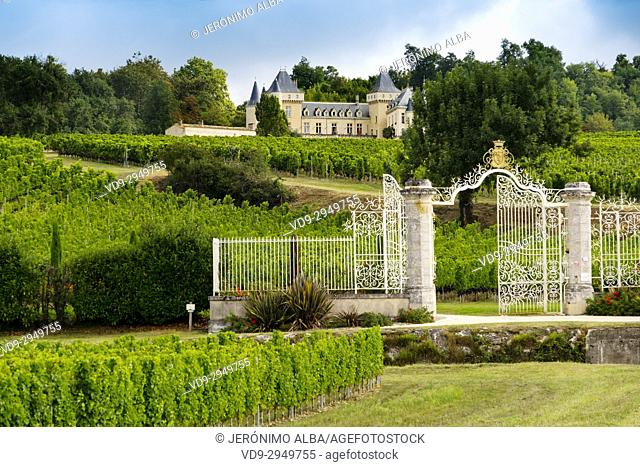 Vineyards Chateau La Riviere, Fronsac. Bordeaux wine region. Aquitaine Region, Gironde Department. France Europe