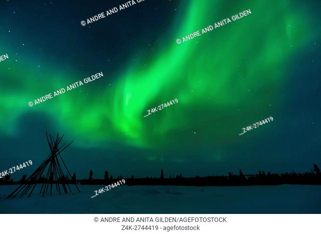 Nightsky and tentpoles lit up with aurora borealis, northern lights, wapusk national park, Manitoba, Canada