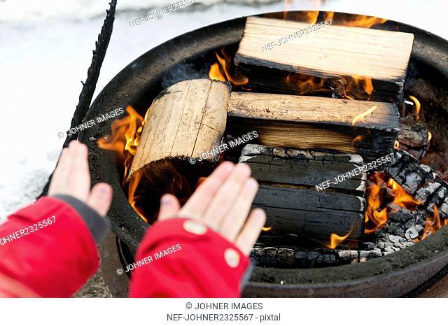 Warming hands at winter