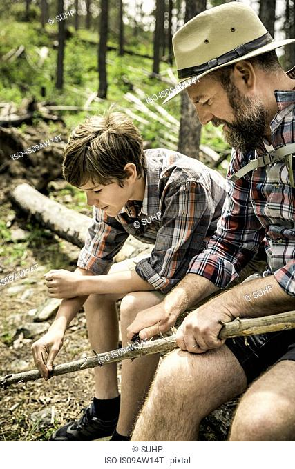 Father and son sitting on fallen tree whittling branch with knife smiling, Red Lodge, Montana, USA