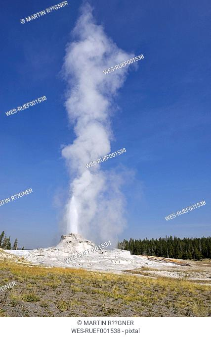 USA, Wyoming, Yellowstone National Park, Castle Geyser erupting