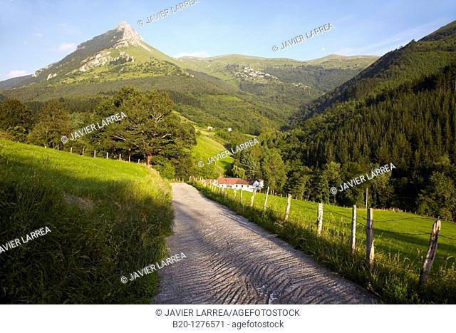 Monte Txindoki, Sierra de Aralar, Zaldibia, Gipuzkoa, Euskadi, Spain