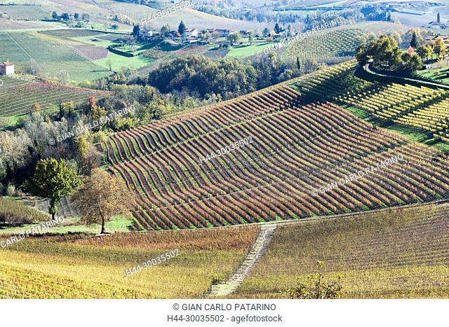 Italy, panorama of vineyards of Piedmont Langhe-Roero and Monferrato on the World Heritage List UNESCO. Landscape in autumn Italy, Piedmont, Vineyards