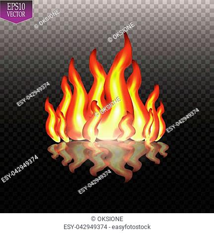 Burning fire flames on transparent background. Vector special light effect. EPS 10