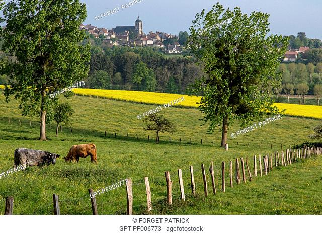 THE COUNTRYSIDE OF THE PERCHE SURROUNDING THE VILLAGE, BELLEME (61), TOWN IN THE REGIONAL PARK OF THE PERCHE, VILLAGE OF CHARACTER, NORMANDY, FRANCE