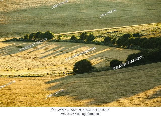 Summer evening in South Downs National Park, East Sussex, England