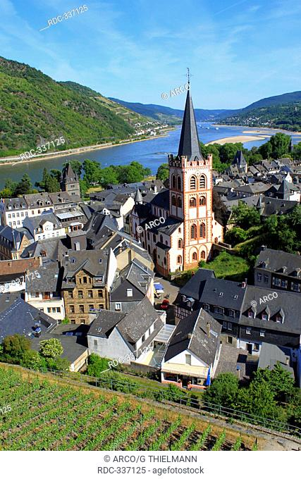 Rhine Valley, Bacharach, Upper Middle Rhine Valley, Rhineland-Palatinate, Germany / Rhine Gorge