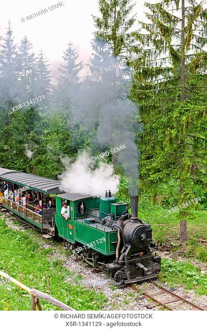 steam train, Museum of Kysuce village, Vychylovka, Slovakia