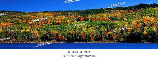 Autumn, Eagle Lake, Acadia National Park, Maine, USA