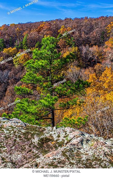 Fall at Pedestal Rock Scenic Area in Witts Springs, Arkansas