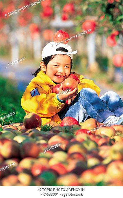 Apple Orchard,Korea