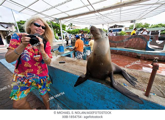 Photographer CT Ticknor from the Lindblad Expedition ship National Geographic Endeavour at the fish market in Puerto Ayora on Santa Cruz Island in the Galapagos...