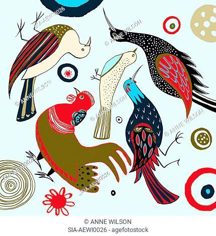 Multi colored birds