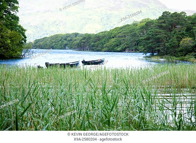 Lough Leane Lake, Killarney National Park, County Kerry; Ireland