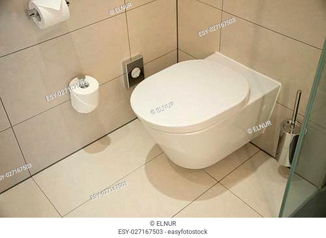 Modern toilet in the bathroom