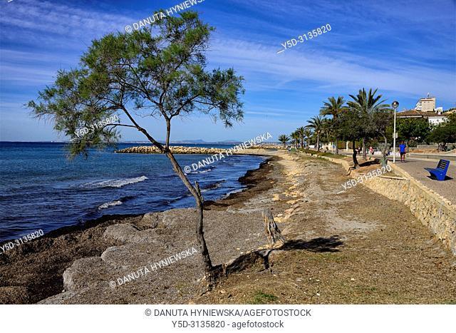 Santa Pola - coastal resort near Alicante, promenade along seaside, Mediterranean Sea coast, comarca of Baix Vinalopo, Valencian Community, Alicante, Spain