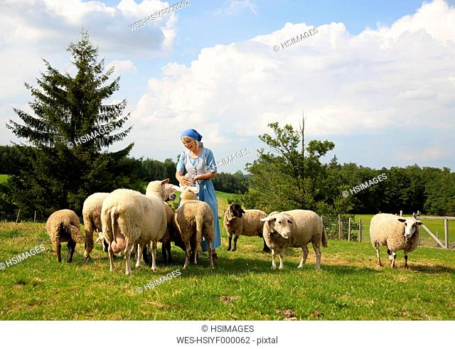 Germany, Bavaria, Mature woman caressing sheep on farm